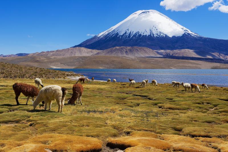 Gruppenreise nach San Pedro de Atacama Chile