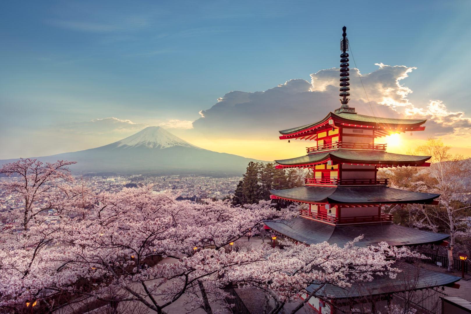 Sakura au printemps au Japon_AdobeStock