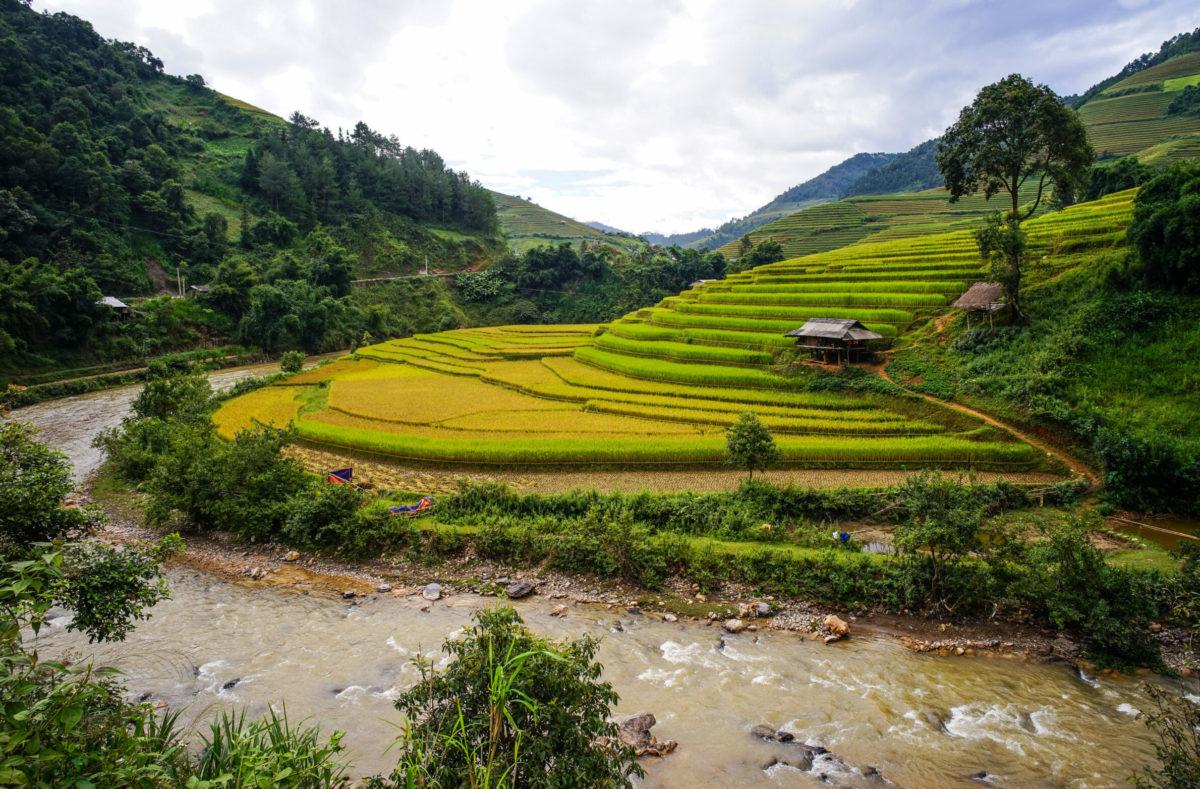 Reisfeldern Mai Chau Vietnam