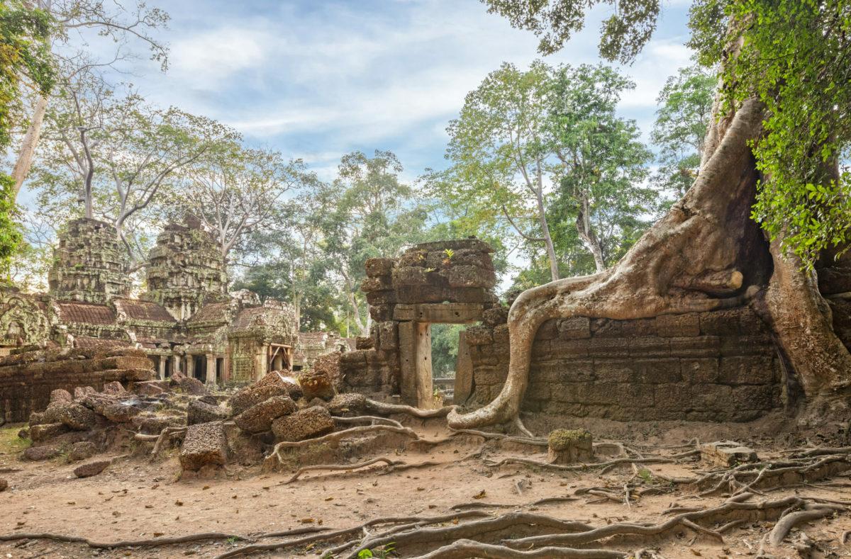 Gruppenbesuch von Ta Prohm Kambodscha
