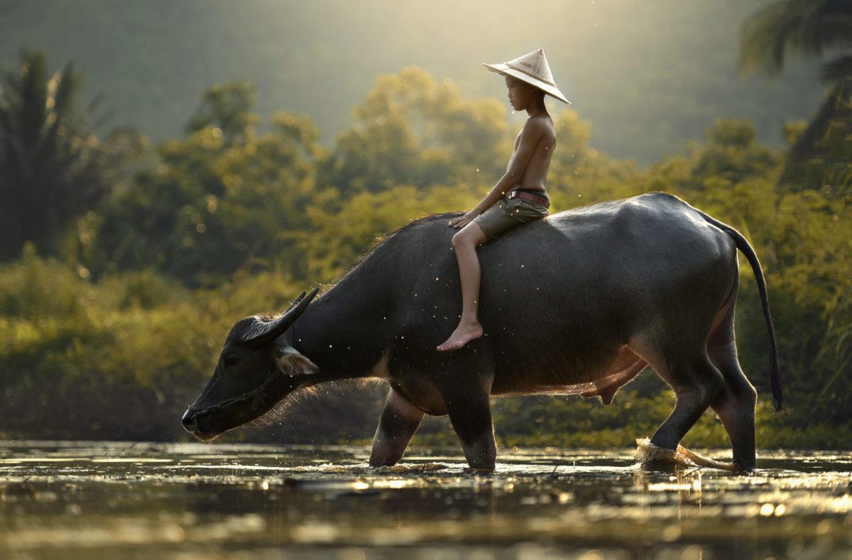 Kultur in Südvietnam und Kambodscha