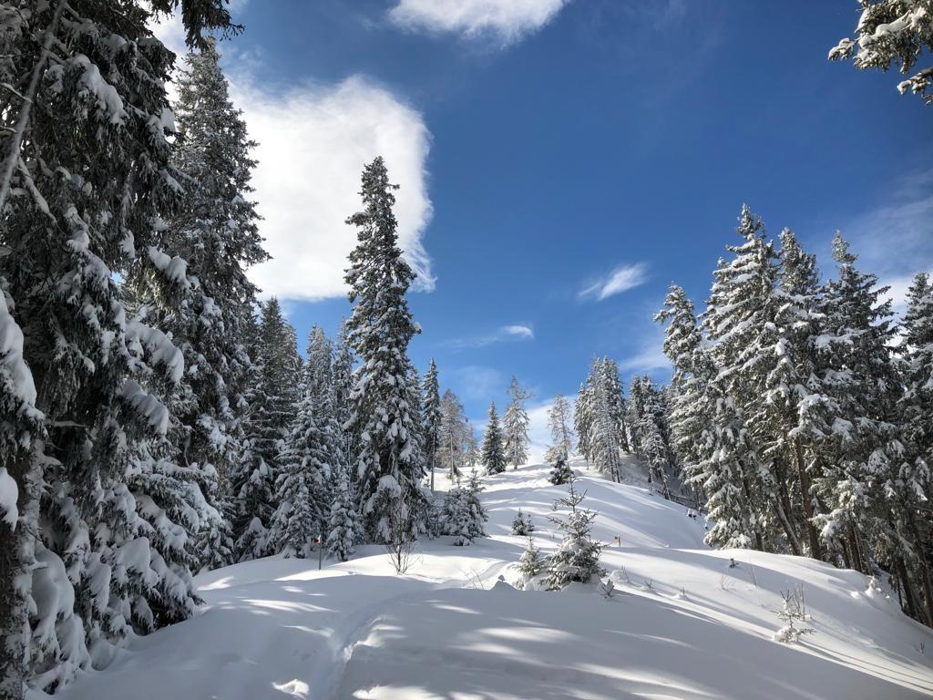 Schneeschuhwandern in idyllischer Natur