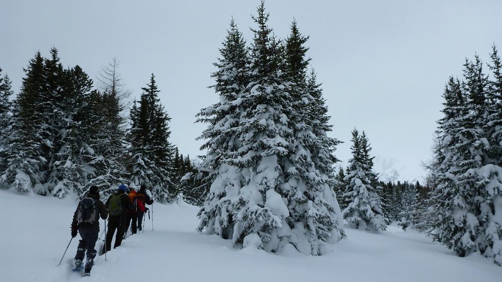 Schneeschuhwandern mit einem Bergführer
