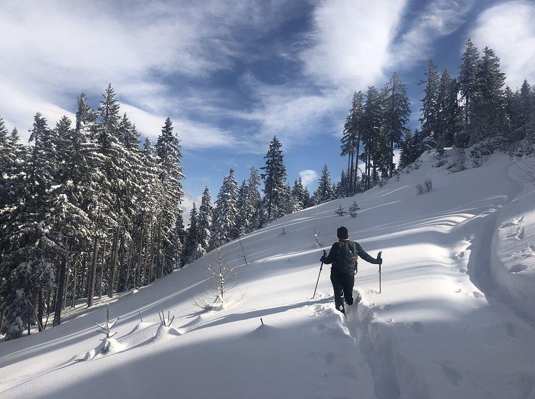 Schneeschuhwandern mit einem Bergführer im St.-Bernard-Land