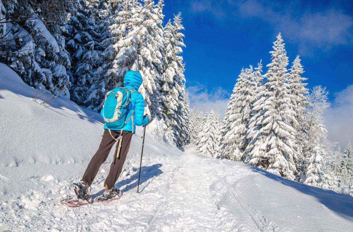 Schneeschuhwandern im St.-Bernard-Land