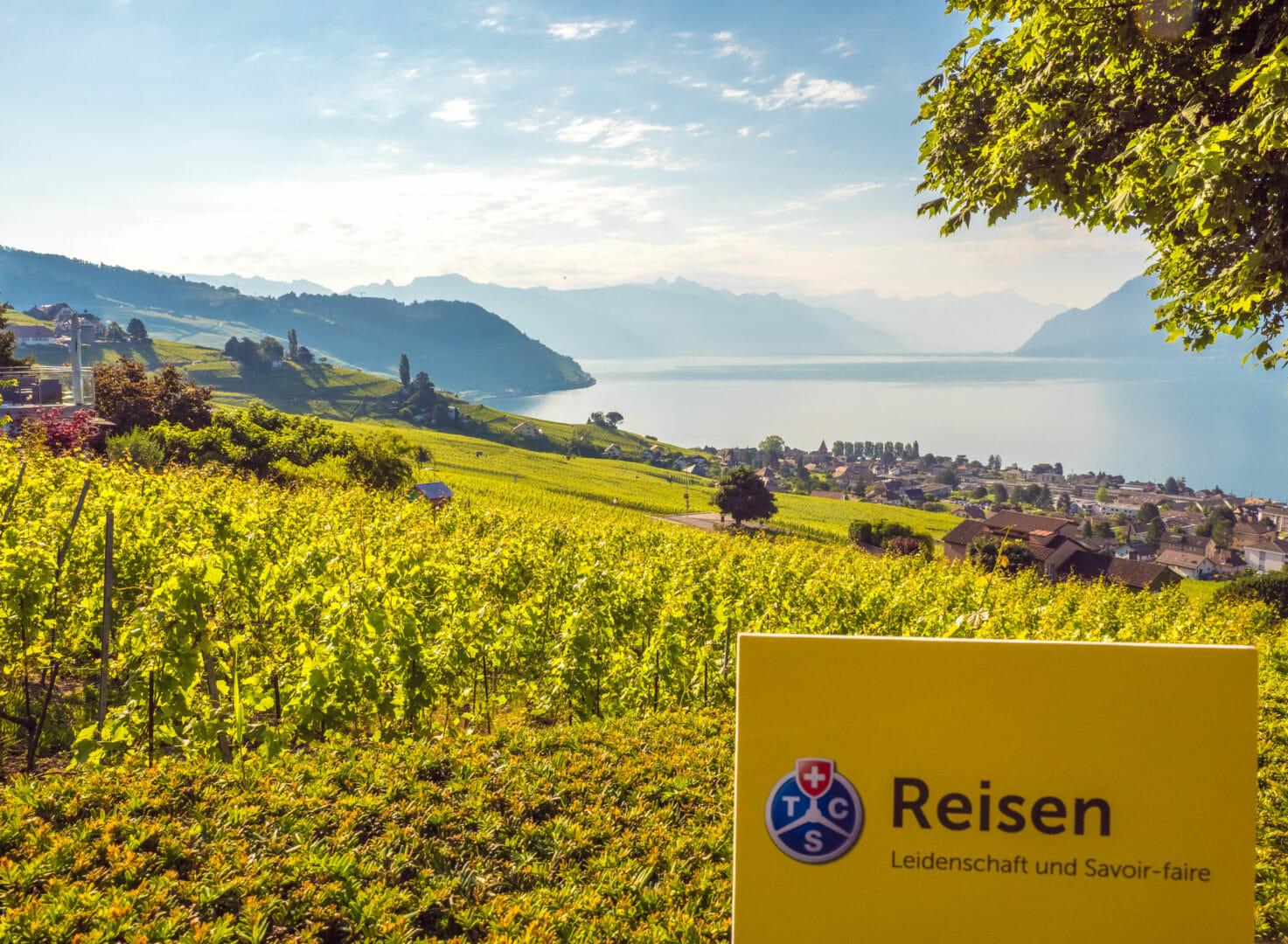 Lavaux, terrassierte Weinberge UNESCO Schweiz