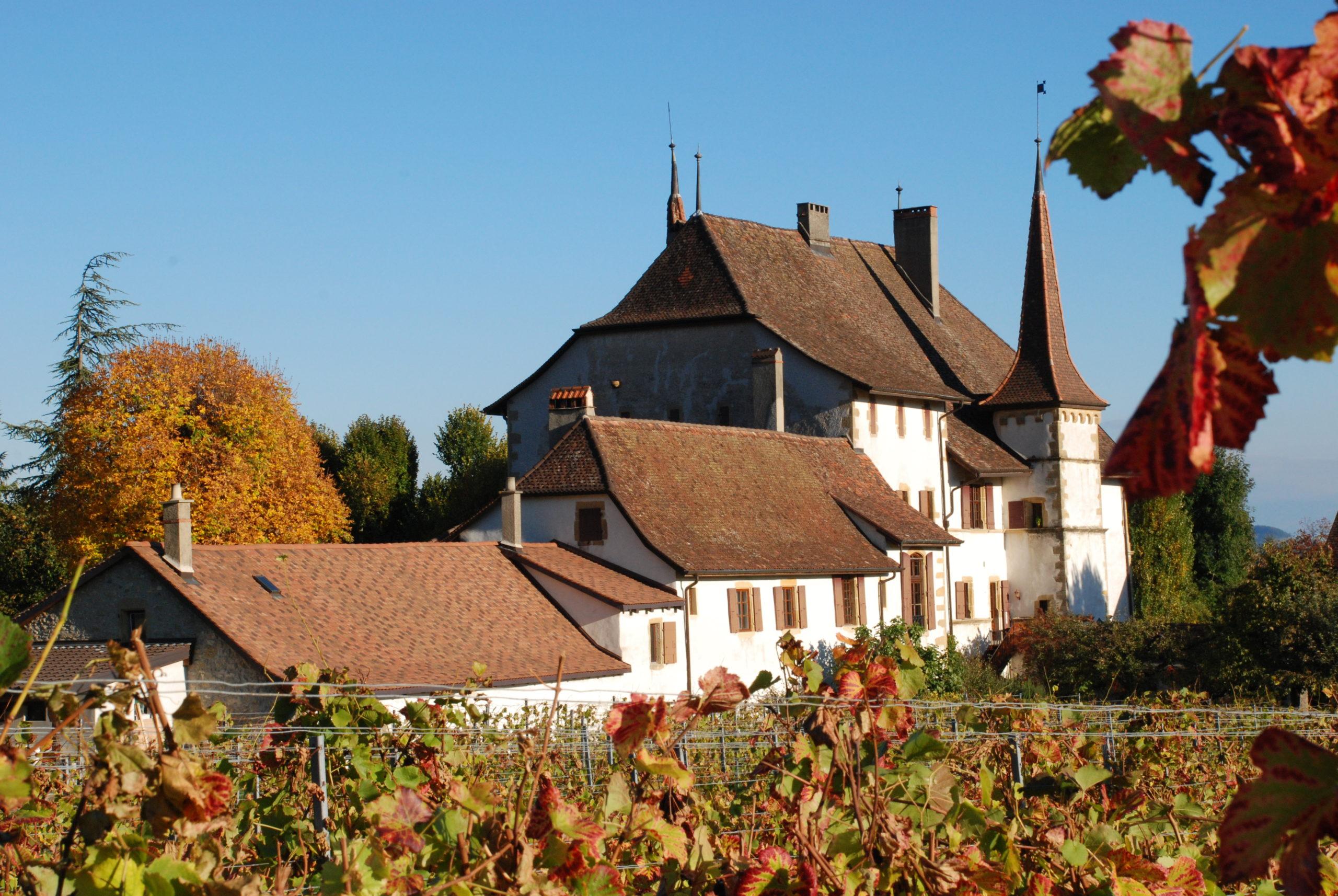 Besuchen Sie Auvernier und sein Schloss im Neuenburgerland