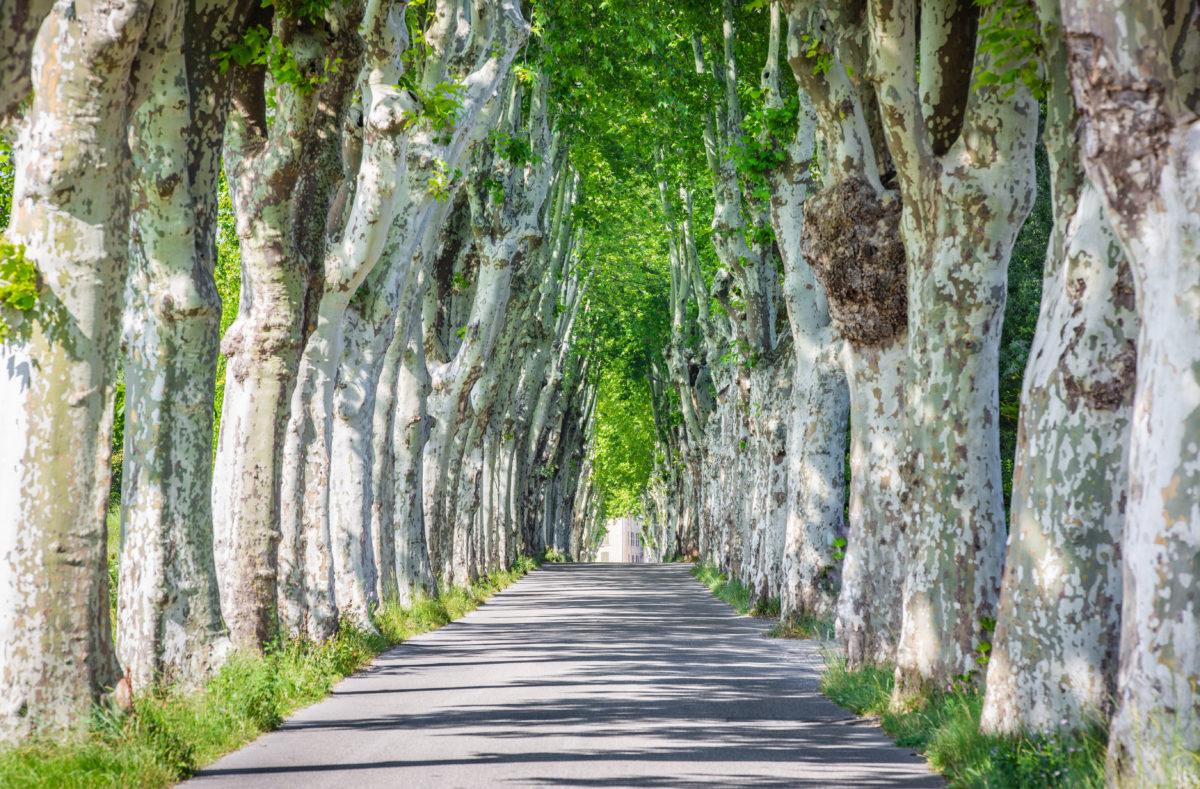 Route Manosque Provence Frankreich
