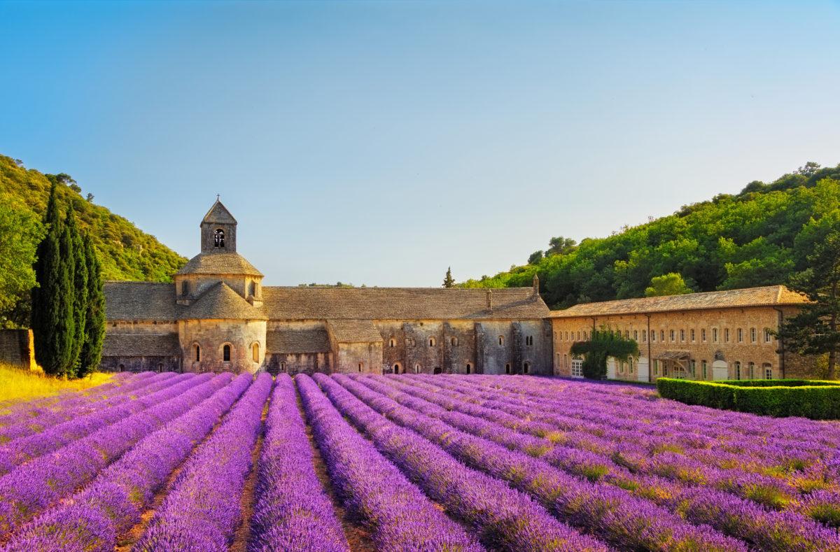 Abtei Senanque und ihr Lavendelfeld Vaucluse Frankreich